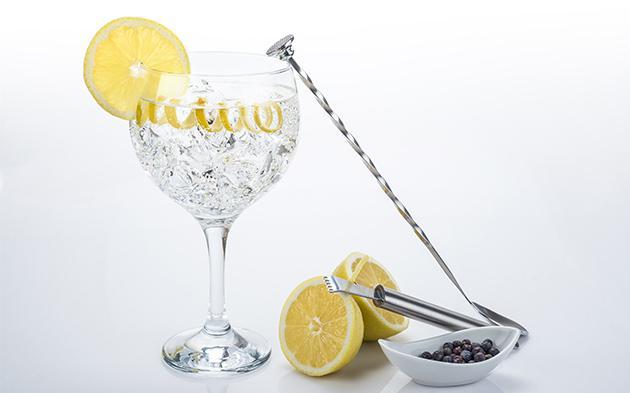 Preparar un Gin Tonic perfecto con Ice Tech